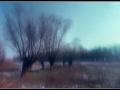 Slavonski vrbik